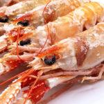 Cigalas ricas en proteínas y bajas en calorías