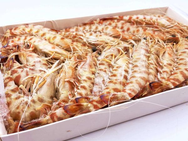 Los Langostinos Tigre son congelados en cajas