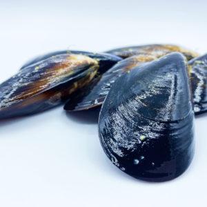 Compra auténticos mejillones gallegos a domicilio: ¡están riquísimos!