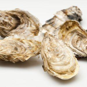 Compra ostras a domicilio, procedentes directamente de Galicia