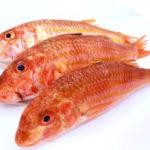 Compra a domicilio deliciosos salmonetes frescos para plancha: directos desde Cádiz a cualquier punto de la península.